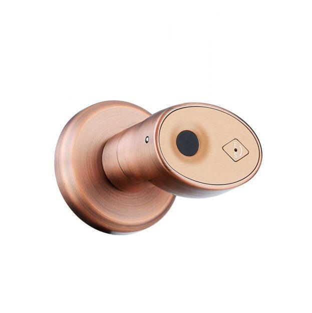 Smart-Biometrische-Fingerprint-T-rschloss-Keyless-Entry-Elektronische-Riegel-Zylinder-Sperren-innen-T-r-Im-Freien-1.jpg